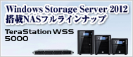 WindowsStorageServer
